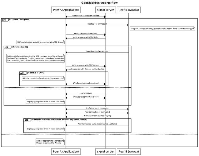 Webrtc workflow