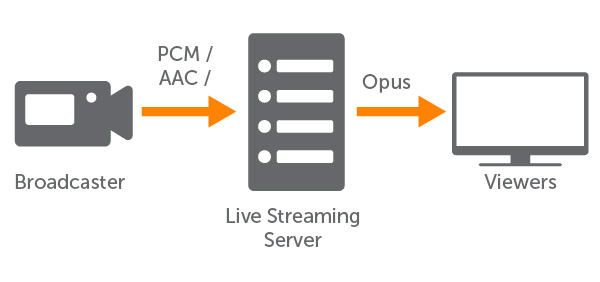 RTMP to WebRTC Workflow With Opus Transcoding