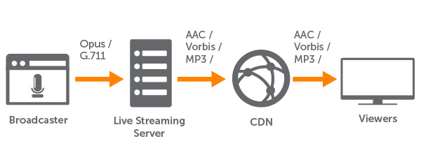 WebRTC to HLS Broadcasting Workflow With Opus Transcoding
