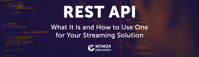 What Is a REST API and What Can It Do for You?