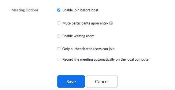 Zoom Meeting Options Pane
