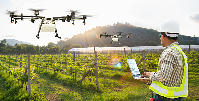 Agriculturist with drone to survey crop yields.